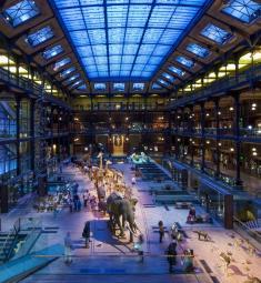 grande-galerie-evolution-jardin-plantes-paris-sortir-75-famille-enfants-loisirs-visite