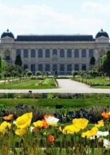 jardin-plantes-zoo-galerie-evolution-paris-museum-sortir-75-visite-famille-enfants